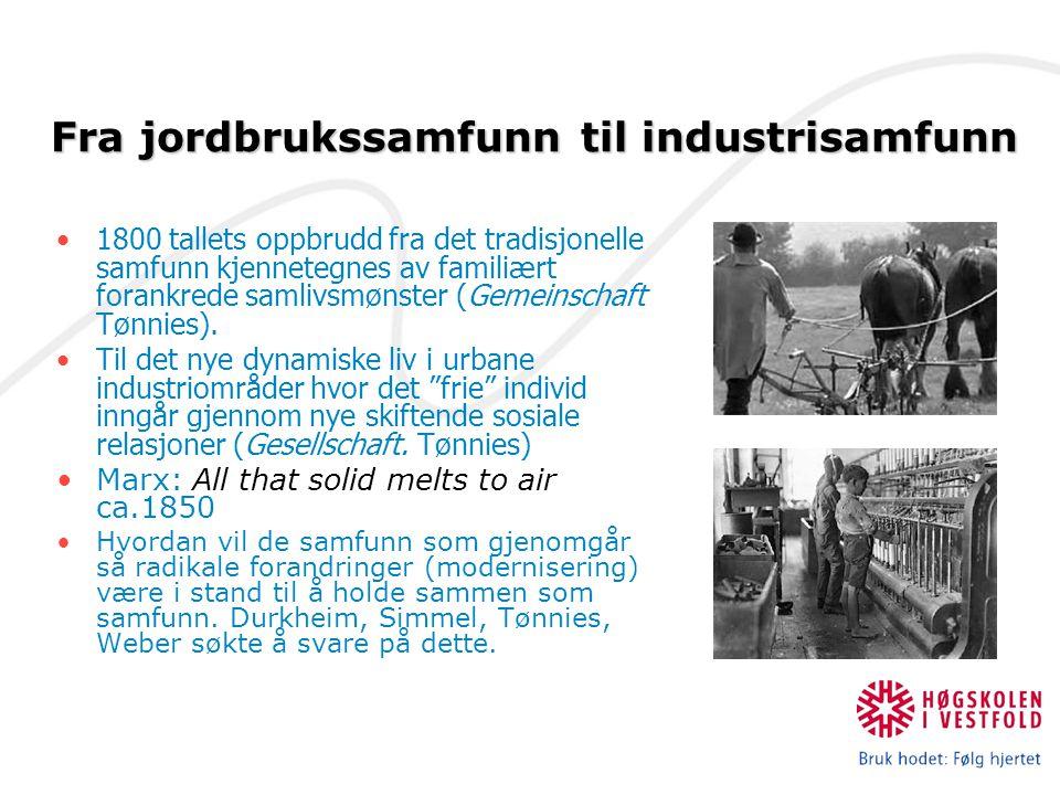 Fra jordbrukssamfunn til industrisamfunn
