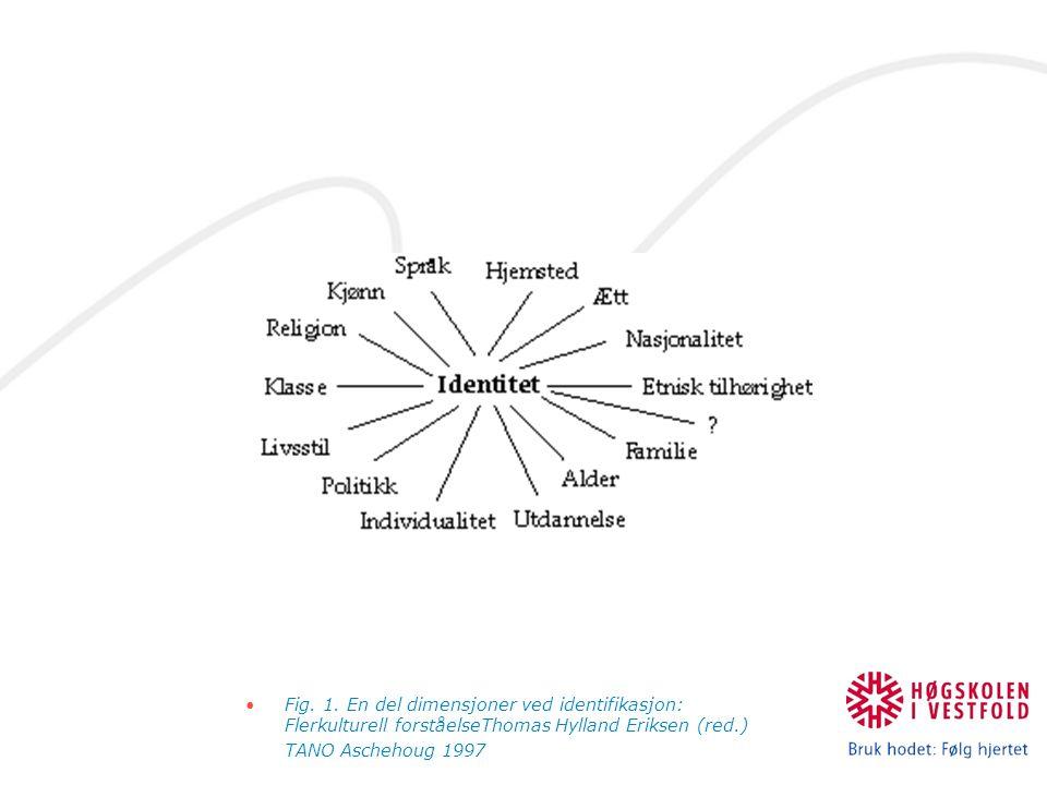 Fig. 1. En del dimensjoner ved identifikasjon: Flerkulturell forståelseThomas Hylland Eriksen (red.)