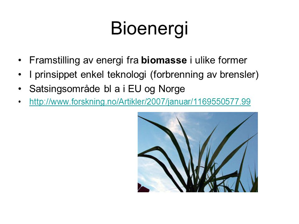 Bioenergi Framstilling av energi fra biomasse i ulike former