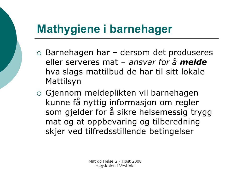 Mathygiene i barnehager