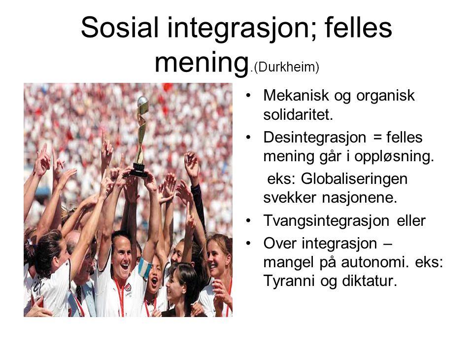 Sosial integrasjon; felles mening.(Durkheim)