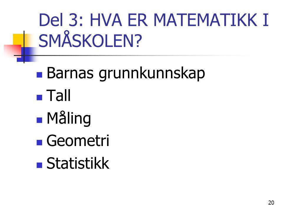 Del 3: HVA ER MATEMATIKK I SMÅSKOLEN