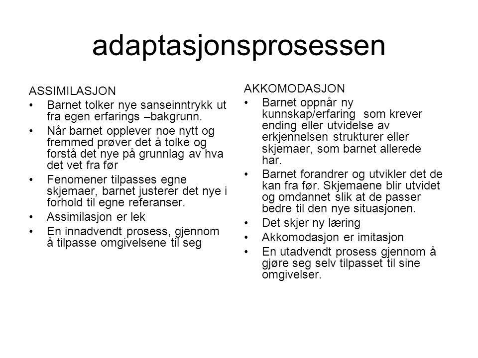 adaptasjonsprosessen