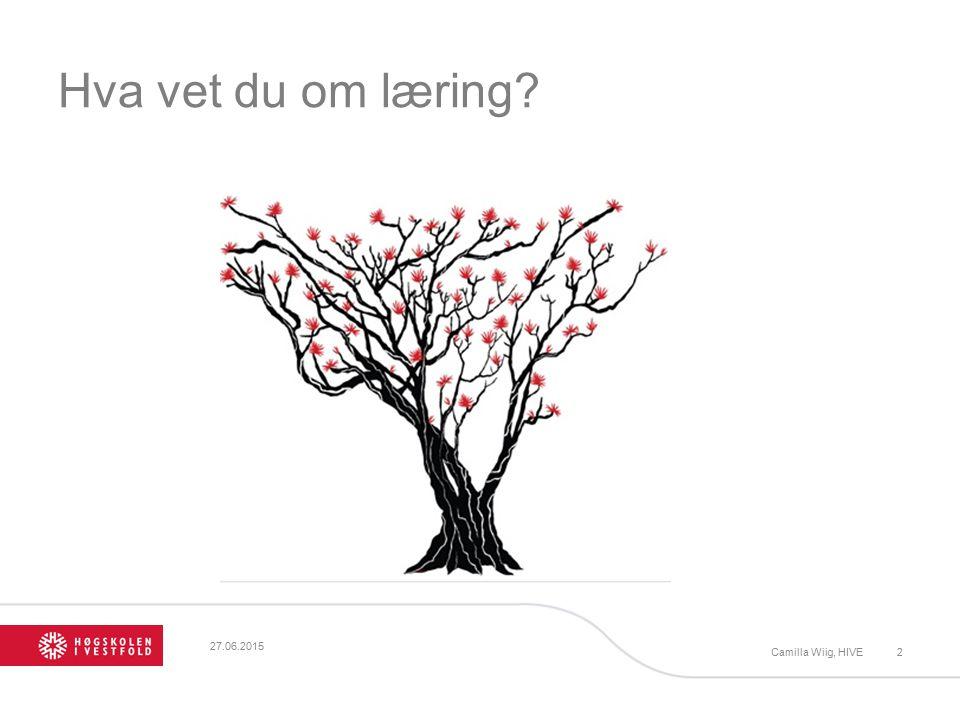 Hva vet du om læring 17.04.2017 Camilla Wiig, HIVE