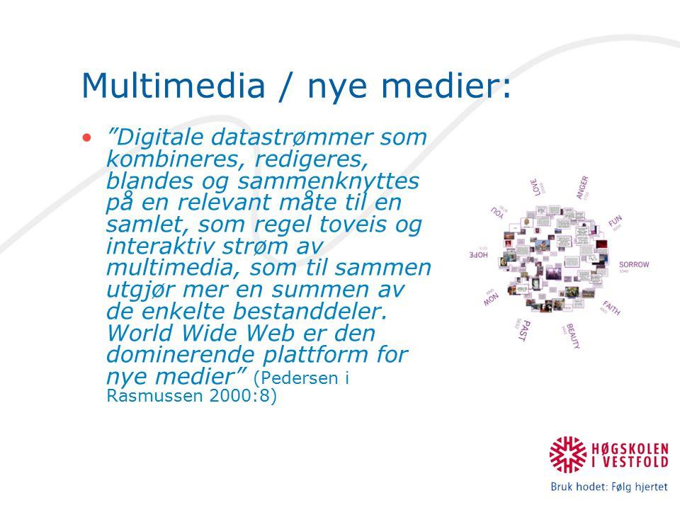 Multimedia / nye medier: