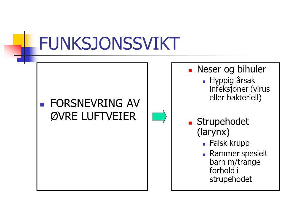 FUNKSJONSSVIKT FORSNEVRING AV ØVRE LUFTVEIER Neser og bihuler