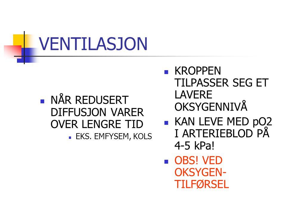 VENTILASJON KROPPEN TILPASSER SEG ET LAVERE OKSYGENNIVÅ