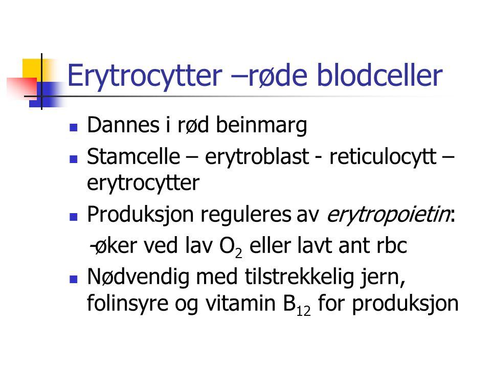 Erytrocytter –røde blodceller