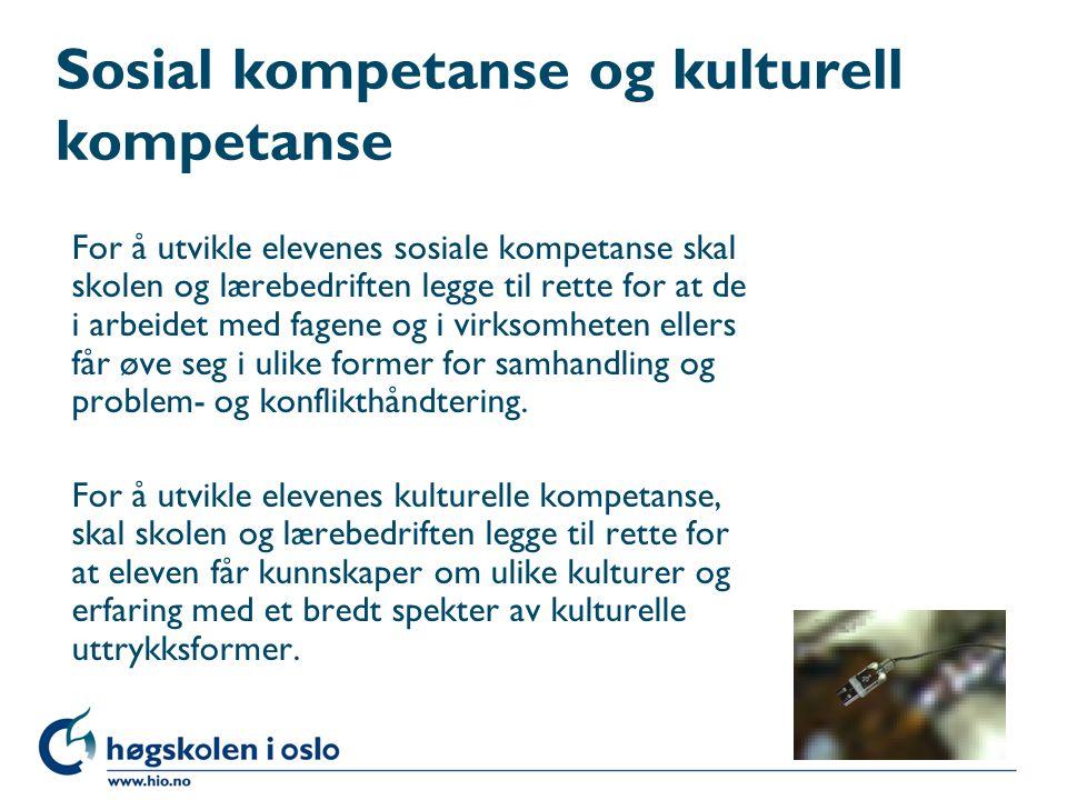 Sosial kompetanse og kulturell kompetanse