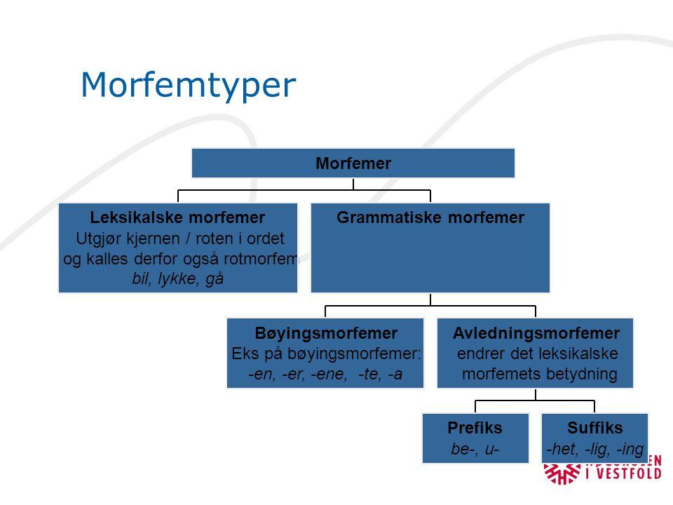 Morfemtyper Leksikalske morfemer Utgjør kjernen / roten i ordet