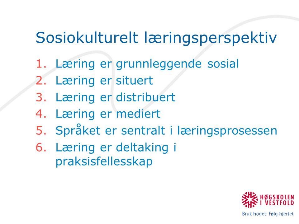 Sosiokulturelt læringsperspektiv