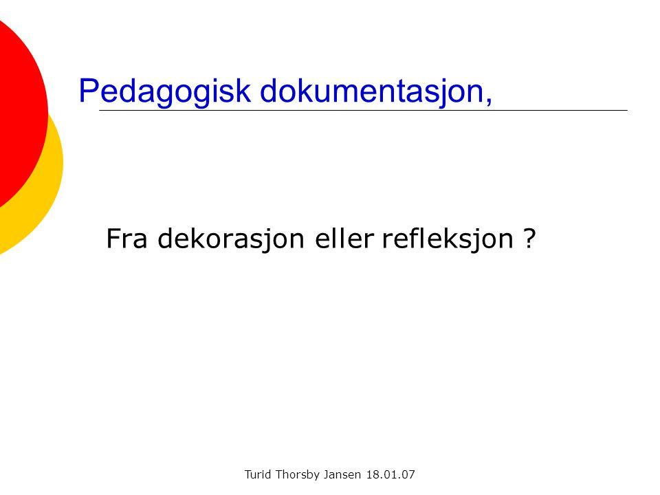 Pedagogisk dokumentasjon,