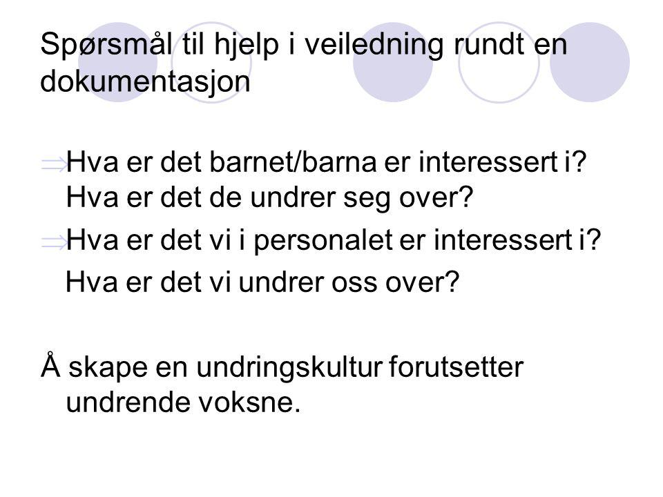 Spørsmål til hjelp i veiledning rundt en dokumentasjon