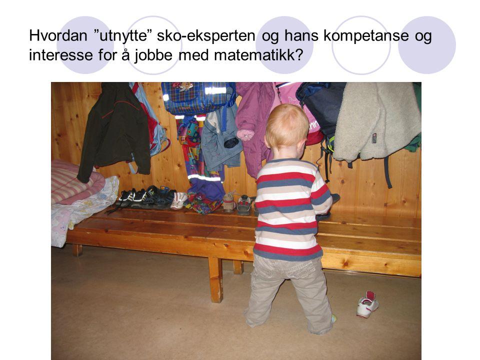 Grimstad 9.mars 09 Hvordan utnytte sko-eksperten og hans kompetanse og interesse for å jobbe med matematikk