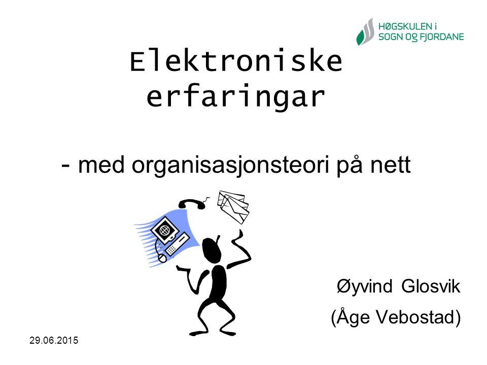 Elektroniske erfaringar - med organisasjonsteori på nett