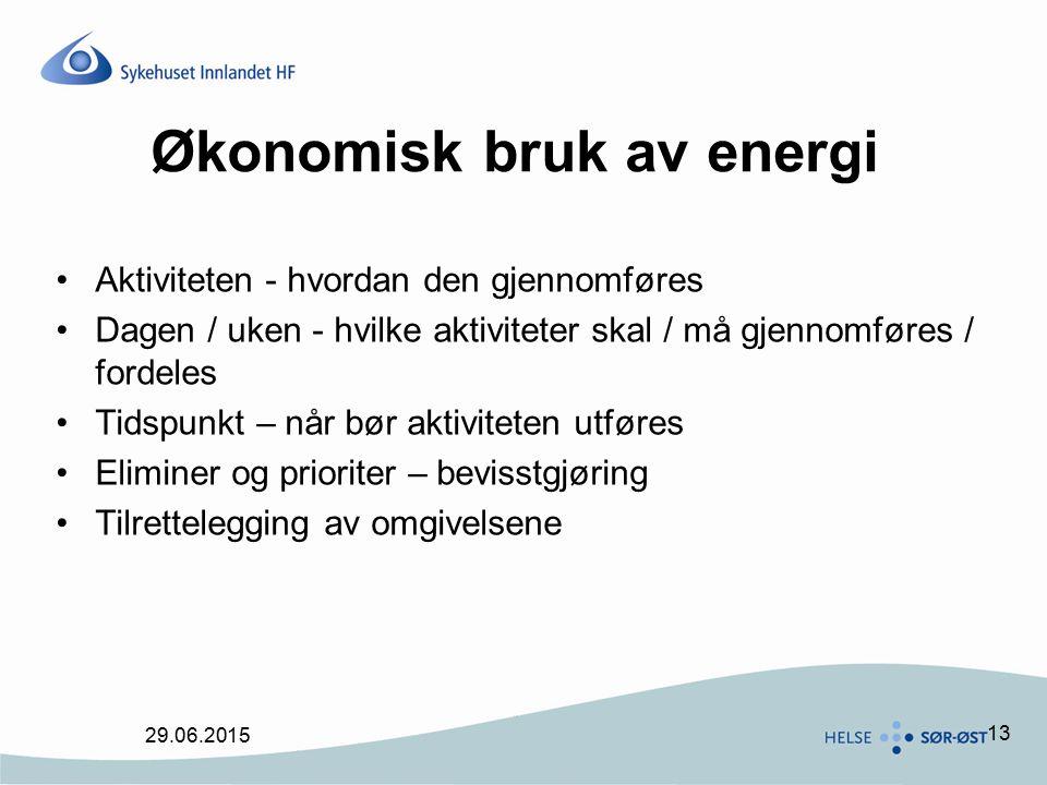 Økonomisk bruk av energi