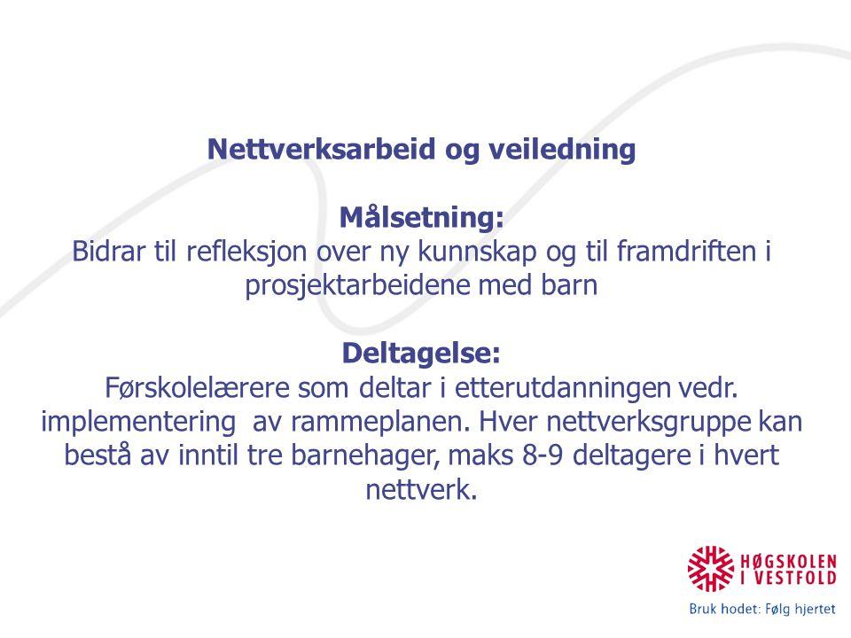 Nettverksarbeid og veiledning