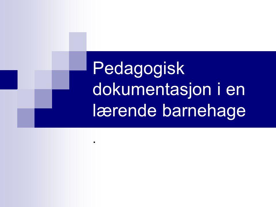Pedagogisk dokumentasjon i en lærende barnehage