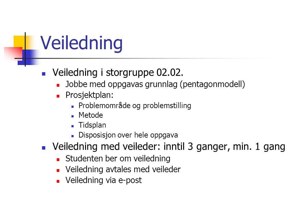 Veiledning Veiledning i storgruppe 02.02.