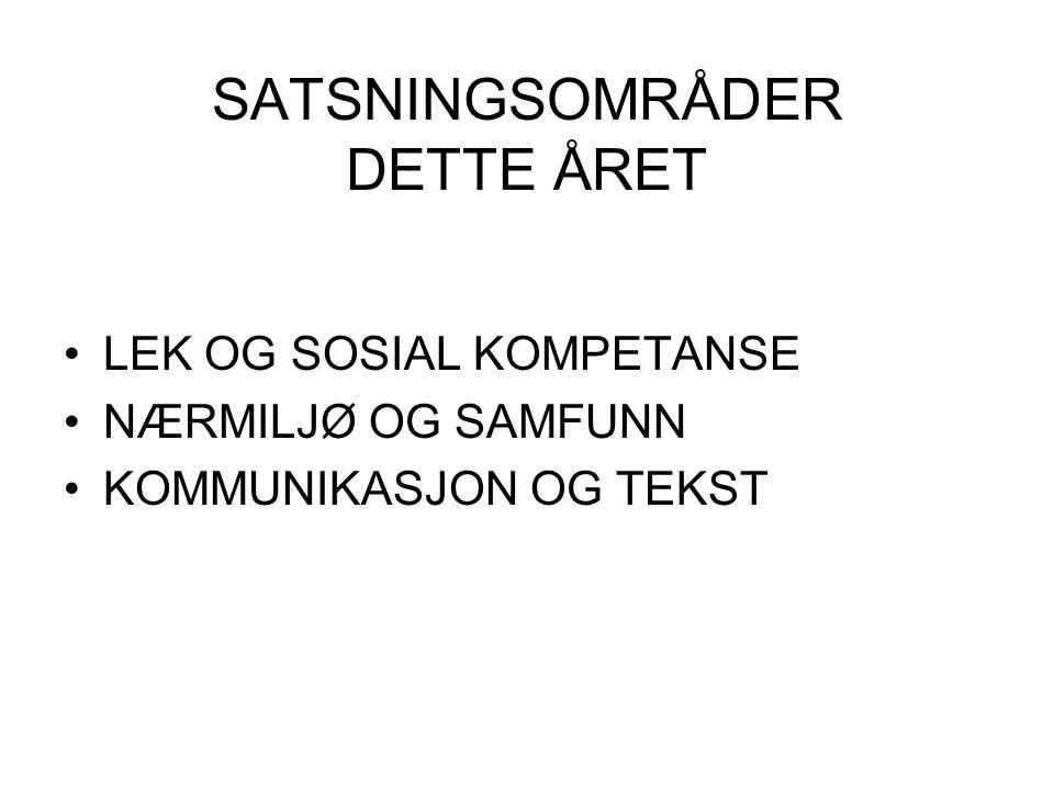 SATSNINGSOMRÅDER DETTE ÅRET