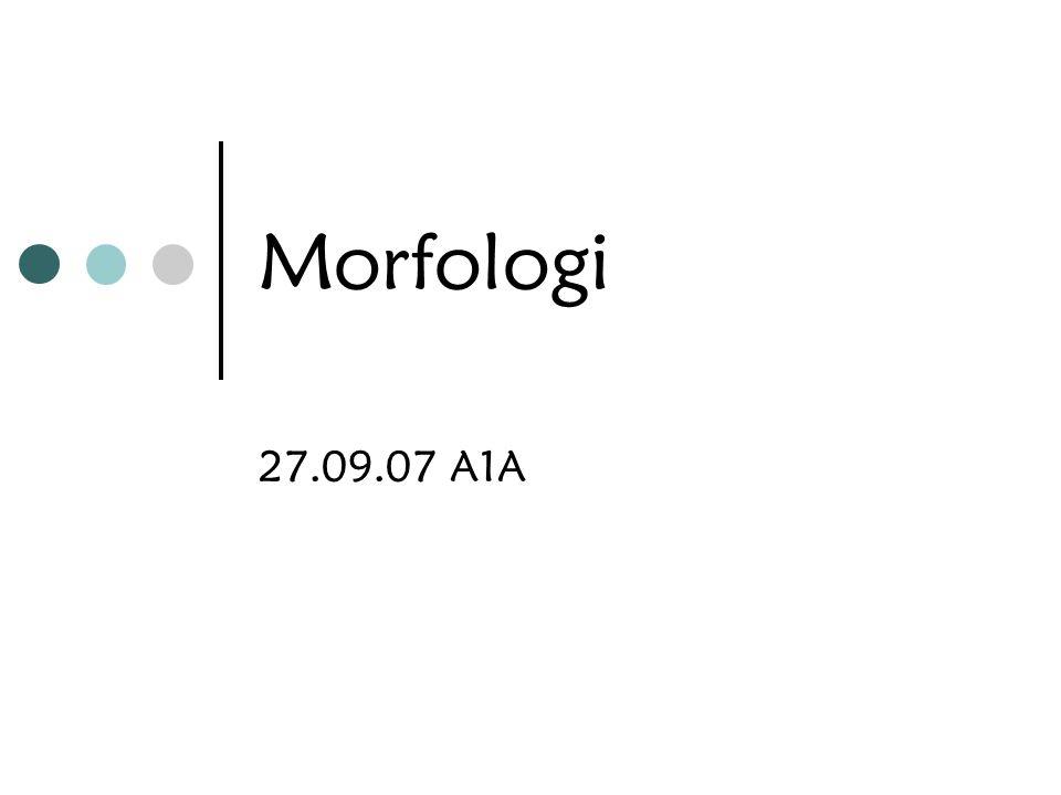 Morfologi 27.09.07 A1A