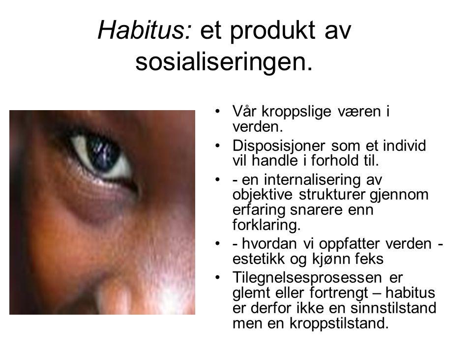 Habitus: et produkt av sosialiseringen.