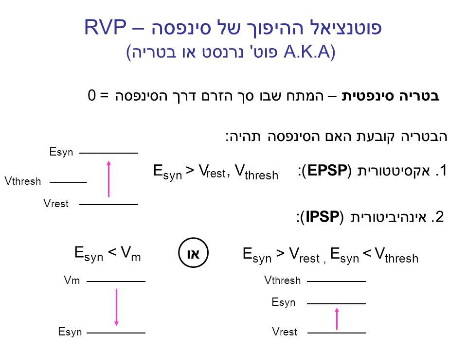 פוטנציאל ההיפוך של סינפסה RVP – (A.K.A פוט נרנסט או בטריה)
