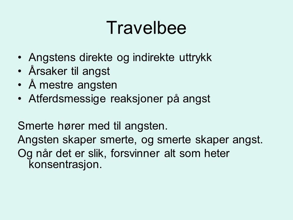 Travelbee Angstens direkte og indirekte uttrykk Årsaker til angst
