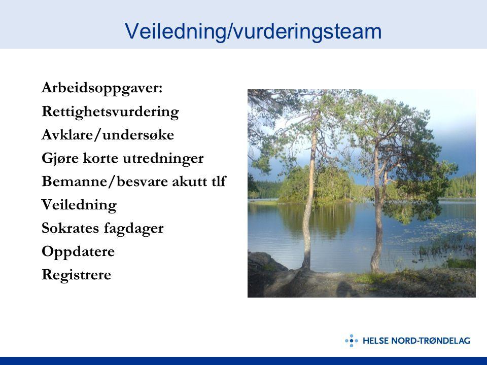 Veiledning/vurderingsteam