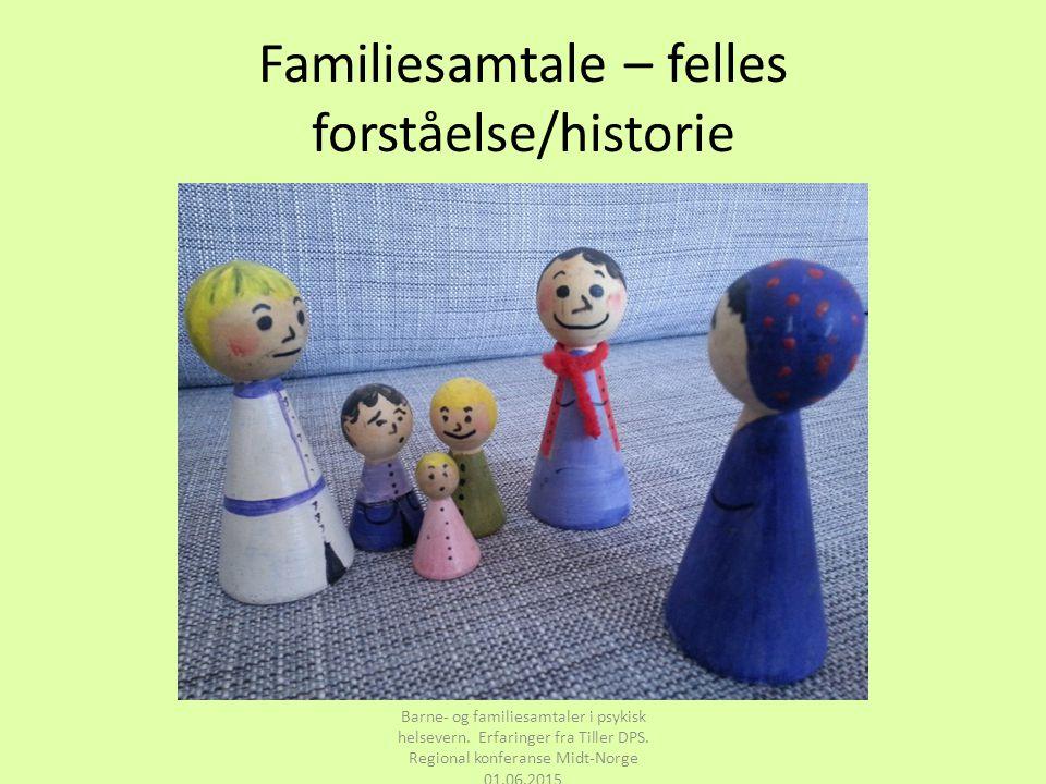 Familiesamtale – felles forståelse/historie