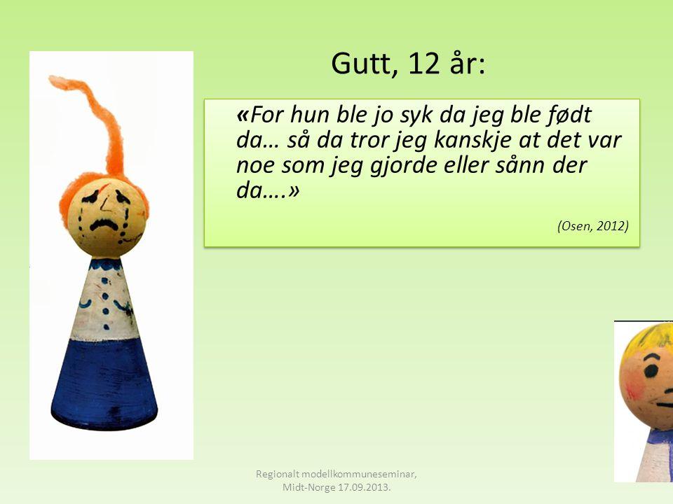Regionalt modellkommuneseminar, Midt-Norge 17.09.2013.