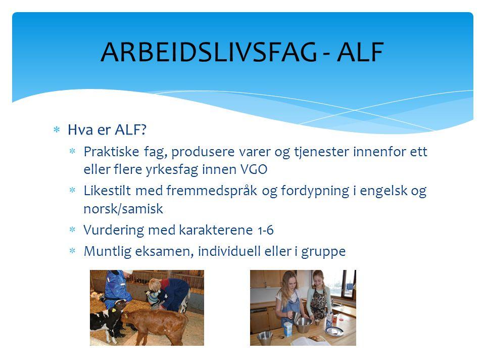 ARBEIDSLIVSFAG - ALF Hva er ALF