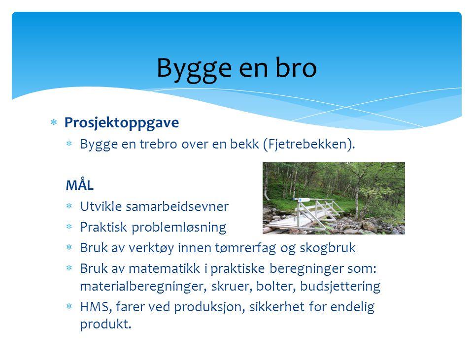 Bygge en bro Prosjektoppgave