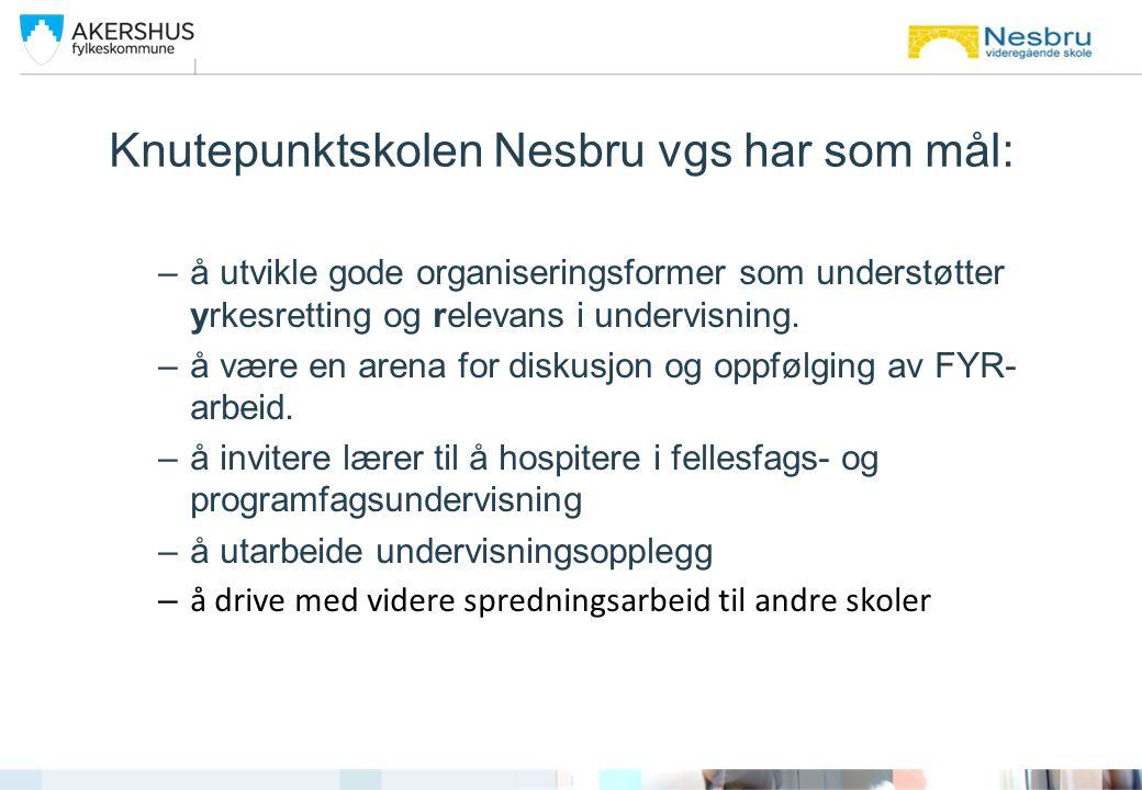 Knutepunktskolen Nesbru vgs har som mål: