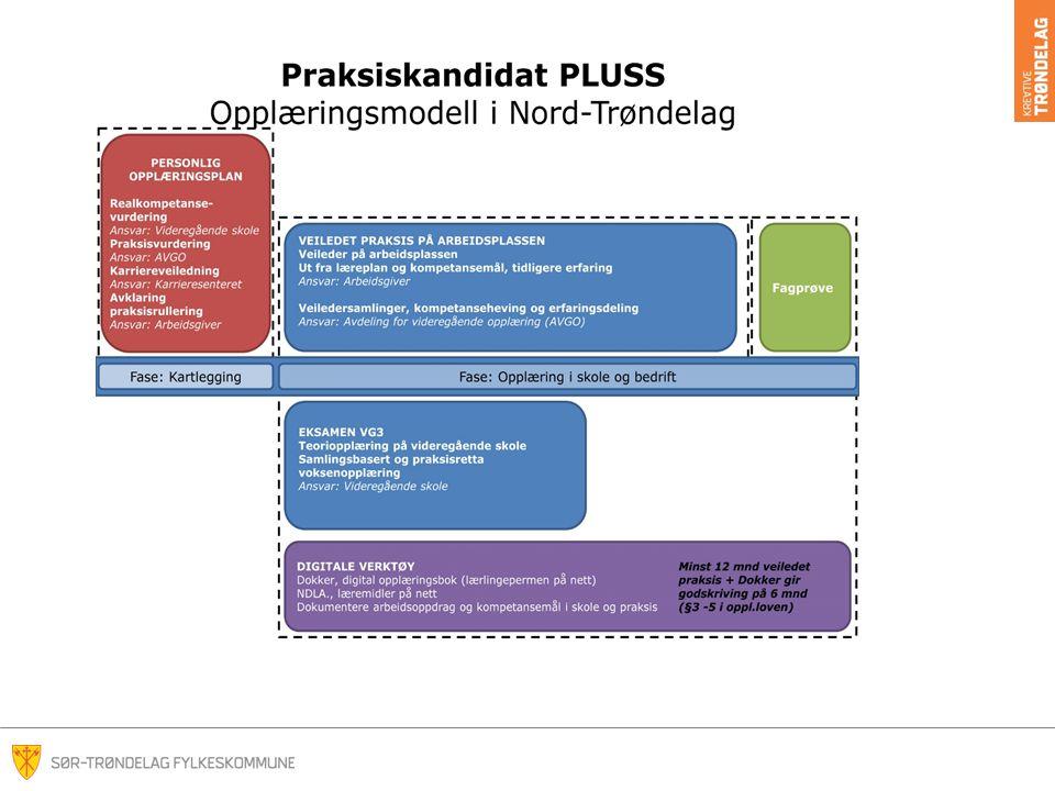 Tidligere pilotprosjekt i Nord-Trøndelag i to andre yrkesområder, helsefagarbeider og barne- og ungdomsarbeider.