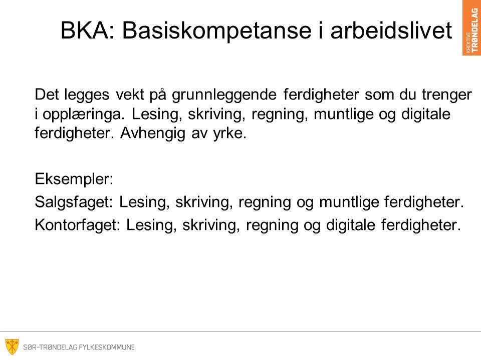 BKA: Basiskompetanse i arbeidslivet