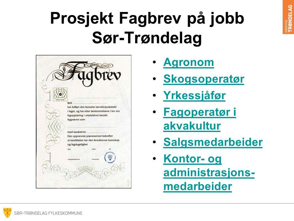 Prosjekt Fagbrev på jobb Sør-Trøndelag