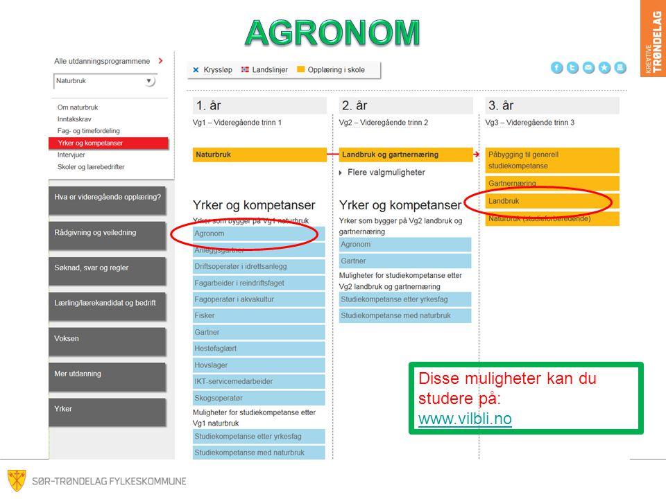 AGRONOM Disse muligheter kan du studere på: www.vilbli.no