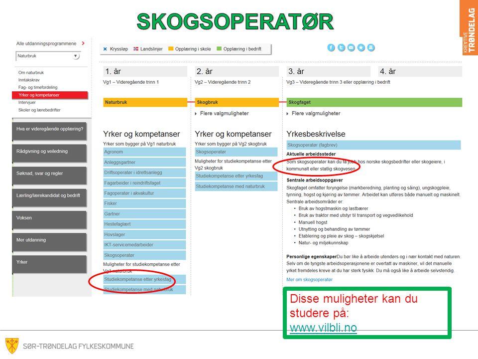 SKOGSOPERATØR Disse muligheter kan du studere på: www.vilbli.no