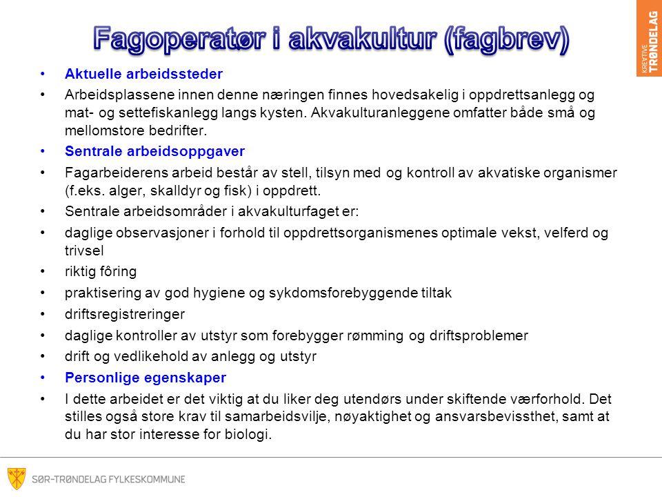 Fagoperatør i akvakultur (fagbrev)