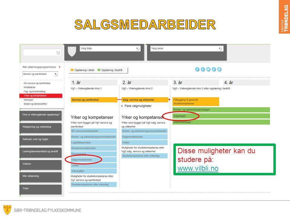 SALGSMEDARBEIDER Disse muligheter kan du studere på: www.vilbli.no