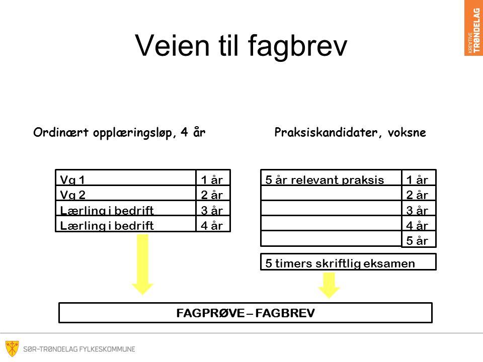 Veien til fagbrev Ordinært opplæringsløp, 4 år Praksiskandidater, voksne. Vg 1. 1 år. 5 år relevant praksis.