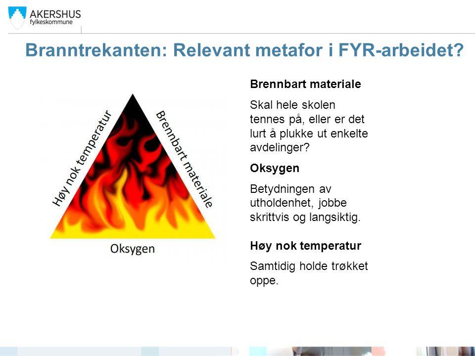 Branntrekanten: Relevant metafor i FYR-arbeidet