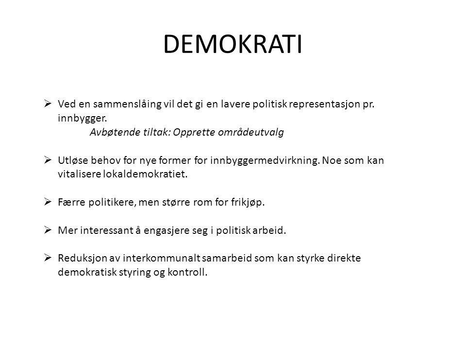 DEMOKRATI Ved en sammenslåing vil det gi en lavere politisk representasjon pr. innbygger. Avbøtende tiltak: Opprette områdeutvalg.