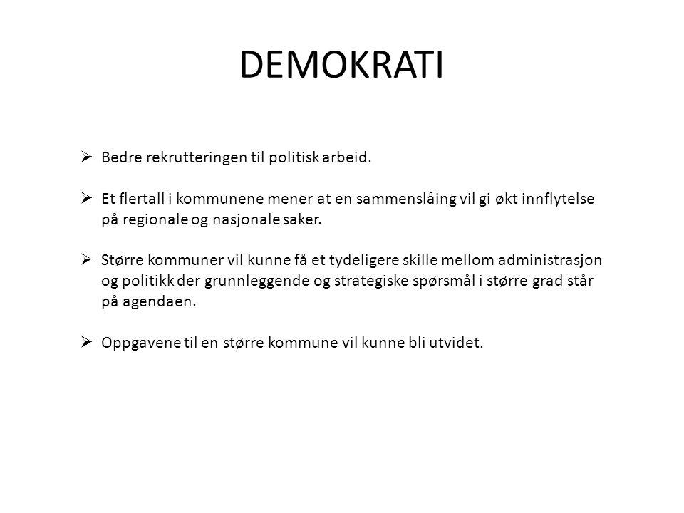 DEMOKRATI Bedre rekrutteringen til politisk arbeid.