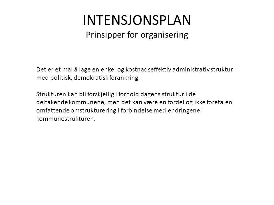INTENSJONSPLAN Prinsipper for organisering
