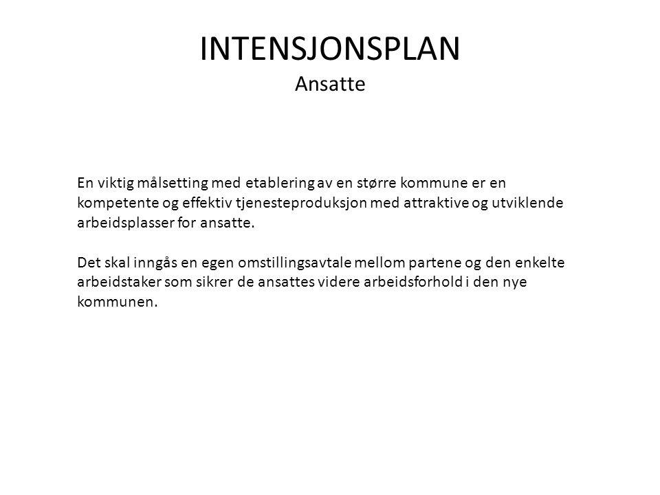 INTENSJONSPLAN Ansatte