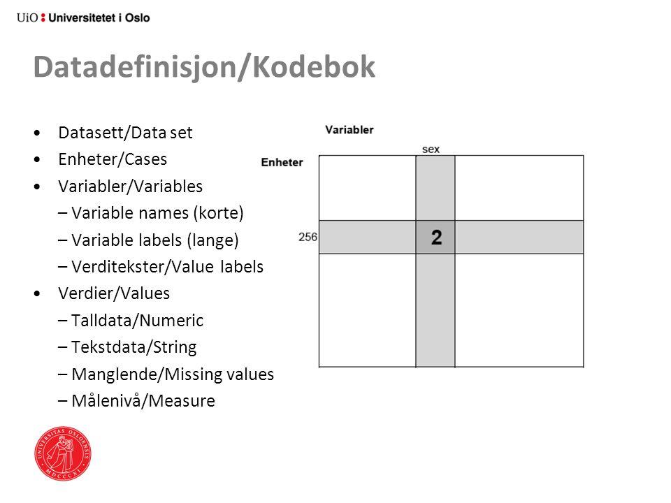 Datadefinisjon/Kodebok