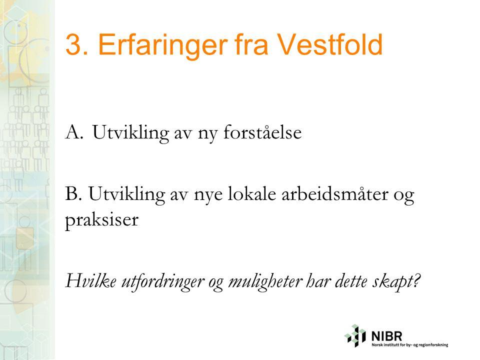 3. Erfaringer fra Vestfold