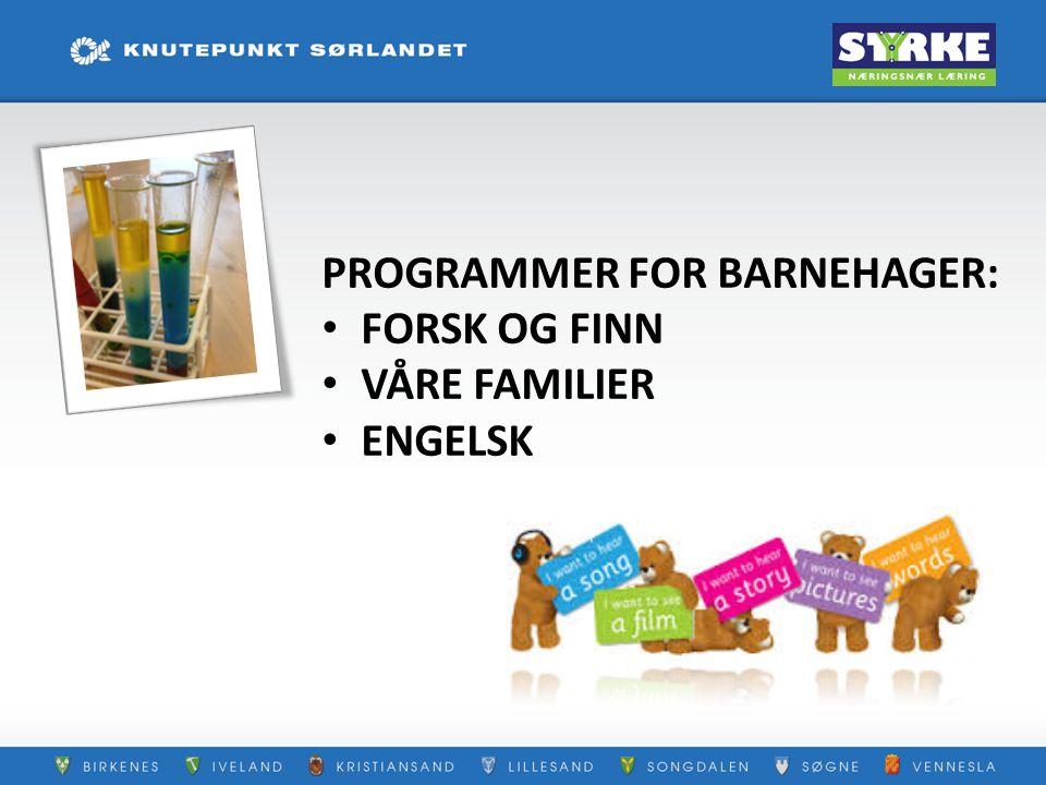 PROGRAMMER FOR BARNEHAGER: